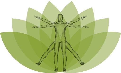 avaliação terapia holistica