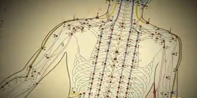 O crescimento das Terapias Holísticas 3