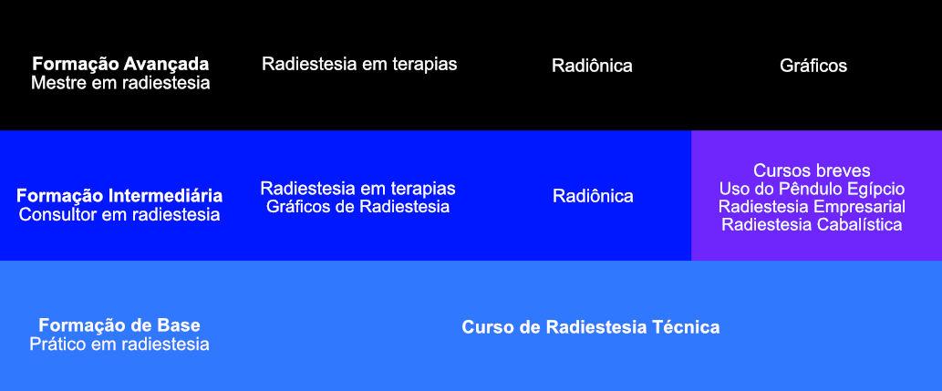 curso radiestesia técnica